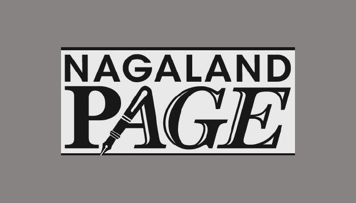 Nagaland invested Rs 293 cr in sick PSUs: CAG