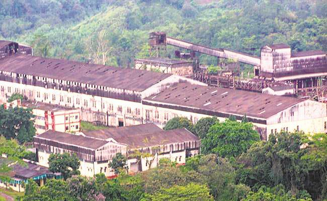 Tuli Paper Mill on verge of liquidation