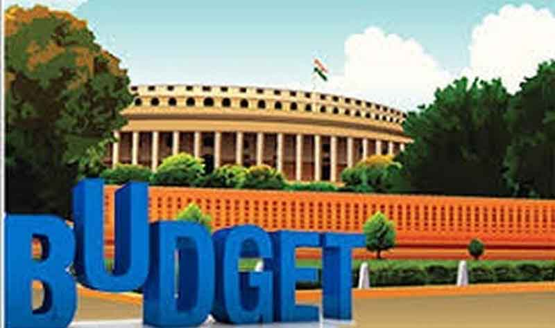 BJP hails Budget, opposition says it lacks vision to revive economy