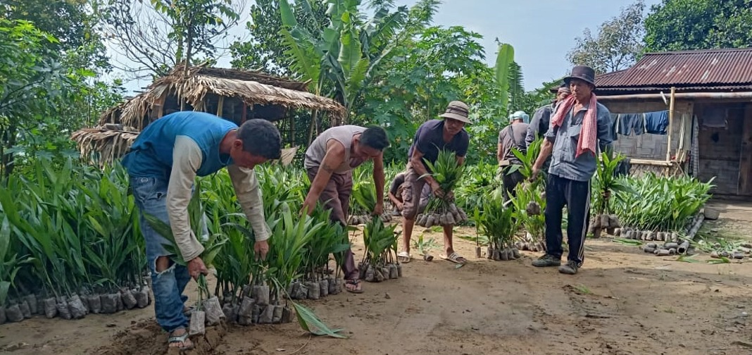 LRD Longleng under PMKSY WDC Project distributes crops to farmers