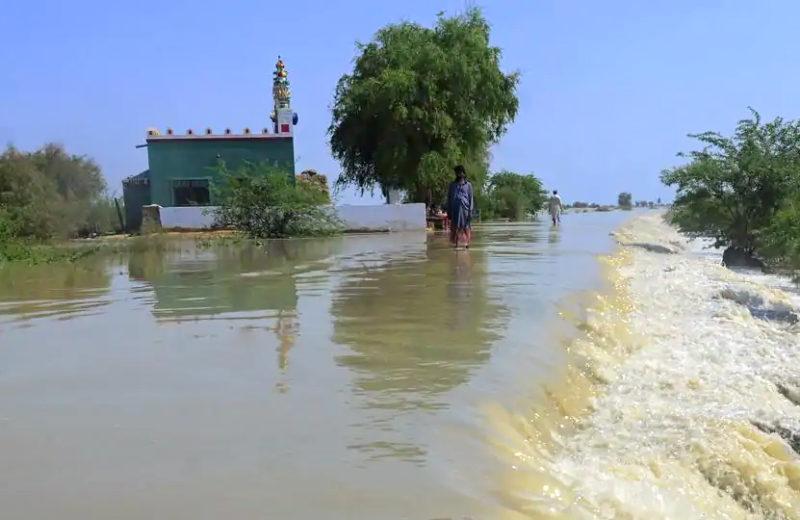 3 days of heavy monsoon rains kill 50 people across Pakistan