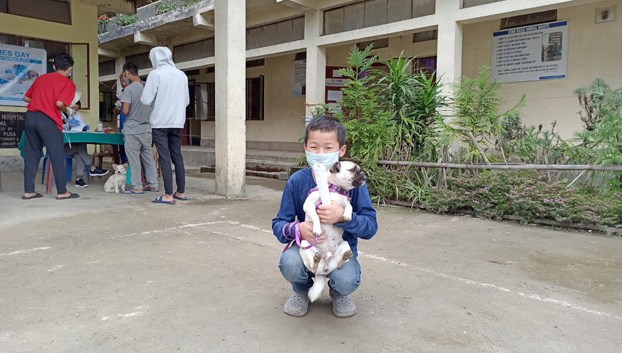 rabies vaccination camp