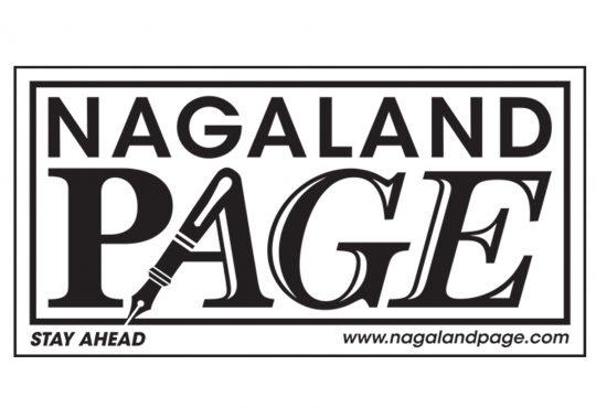 Nagaland Page Logo