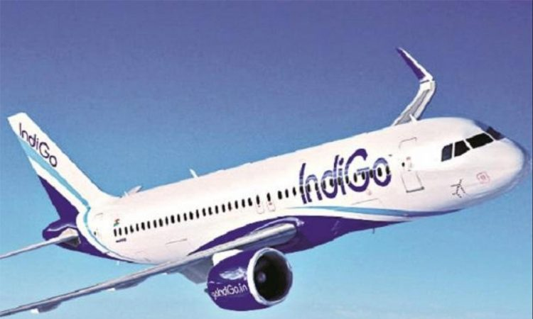 Indigo flights