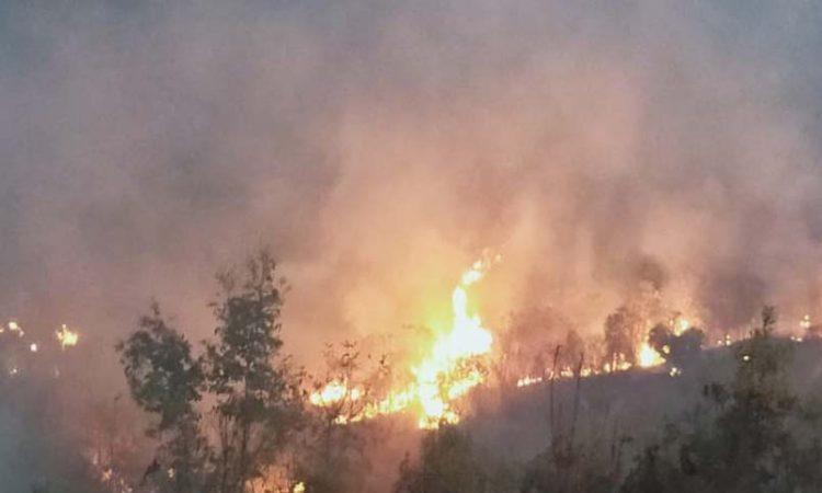 Kohima jungle fire