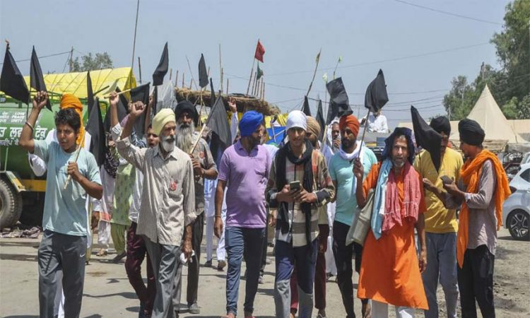 farmers protest black flags