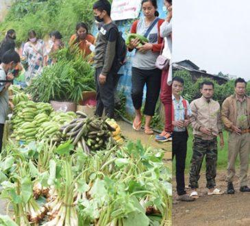 Sales Day Plantation drive at Wokha