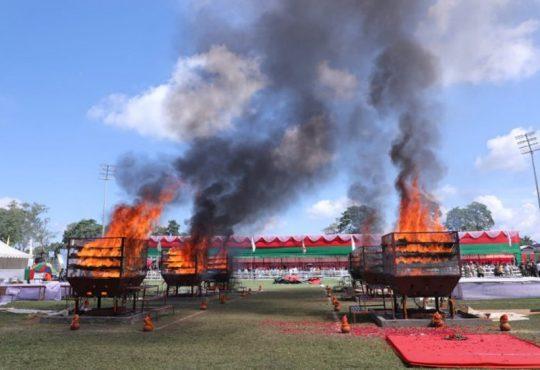 rhino horns burnt